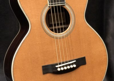 Tinted top Sitka Spruce
