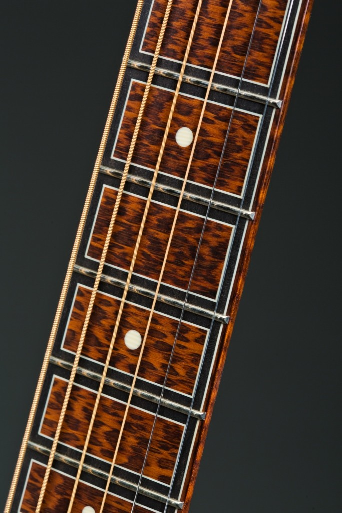 Fingerboard Binding - Snakewood