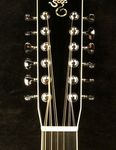 12 string Dreadnought (2)