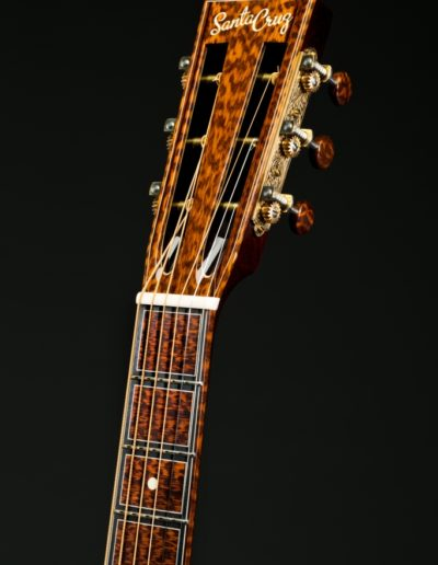 Snakewood century block fingerboard inlays