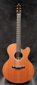 Just Shipped Wed Sept 27th: Standard FS Model
